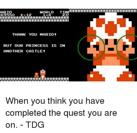i thought you d be faster the quest to become an athlete books 25 best memes about thank you mario but our princess is