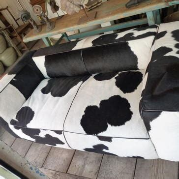 cow print couch 77 best cows for the living room images on pinterest cow