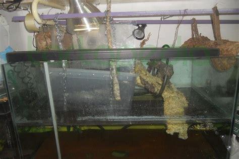 vasca per tartarughe grandi costruire la zona emersa utilizzando vasca ikea e
