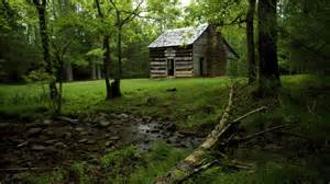 old forest house wallpaper free old forest house wallpaper