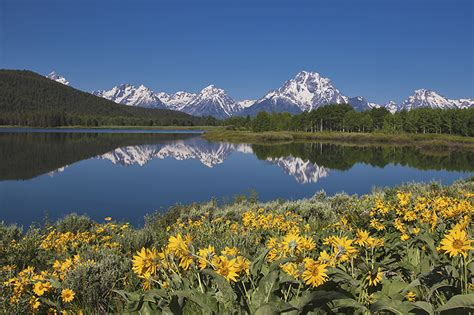 spring   tetons photography  franzfoto