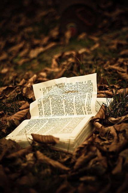 libro autumn is here book 著作 книга livre libro read 読む lire читать inspire books reading