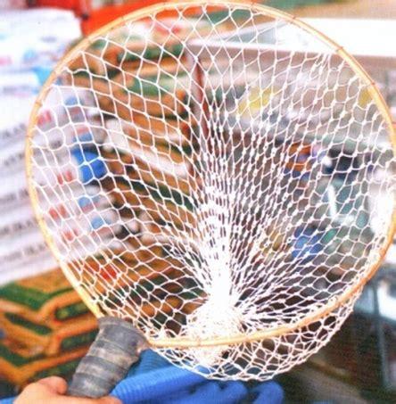 Timbangan Ikan Lele alat alat yang sebaiknya dipersiapkan saat beternak lele sangkuriang komunitas budidaya lele