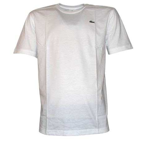 White Shirt Lacoste Plain White T Shirt T Shirts From Designerwear2u Uk
