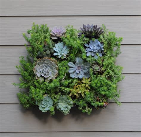 How To Make Wall Planters by Living Wall Planters Living Wall Planter