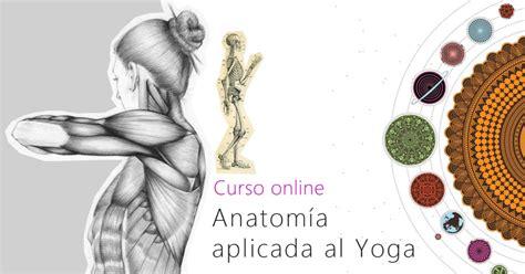 anatoma para vinyasa flow consejos para aliviar la tensi 243 n cervical julia zatta