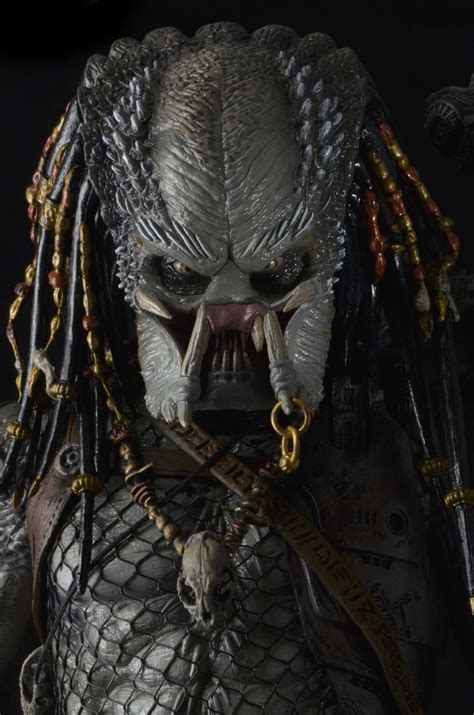 Vs Predator Elder Predator predators elder predator