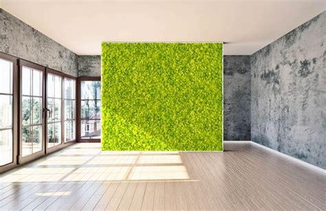 mousse canapé sur mesure 17 b 228 sta bilder om mur v 233 g 233 tal stabilis 233 lichen 100