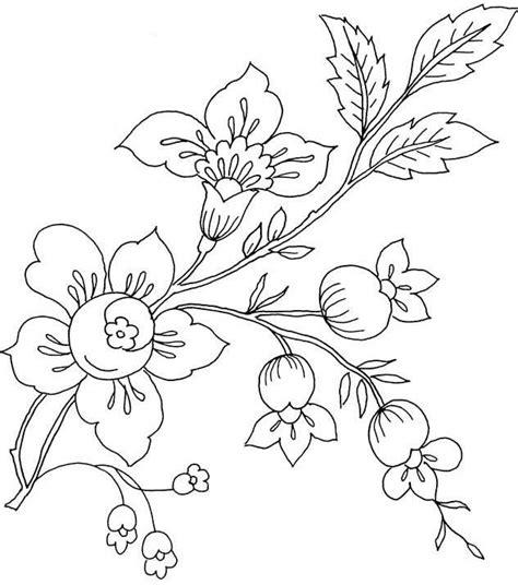 gambar bunga sakura kartun gambar mewarnai bunga matahari