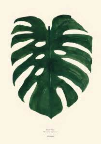 monstera green print print an and the plant