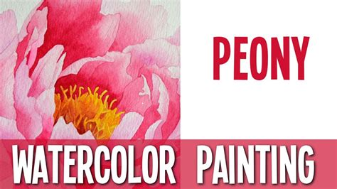 watercolor tutorial peony watercolor painting tutorial peony doovi