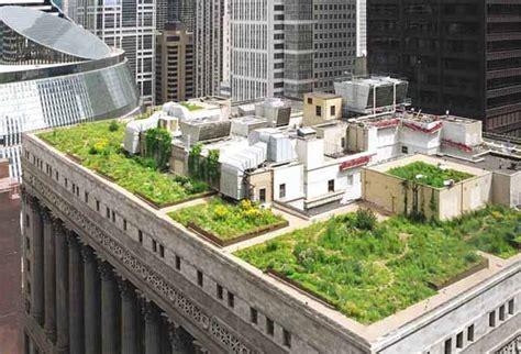 giardino sul tetto costruire un giardino sul tetto