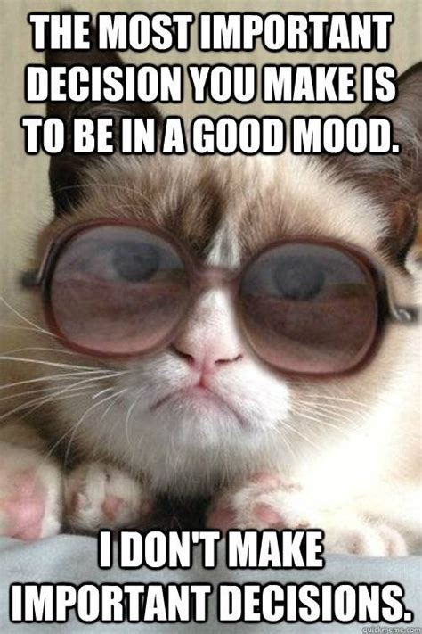 Make A Grumpy Cat Meme - 2327 best images about grumpy cat on pinterest