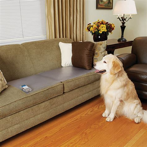 stop dog from peeing on couch scatmat 174 pet proofing mat couch size 12 quot x 60 quot by petsafe