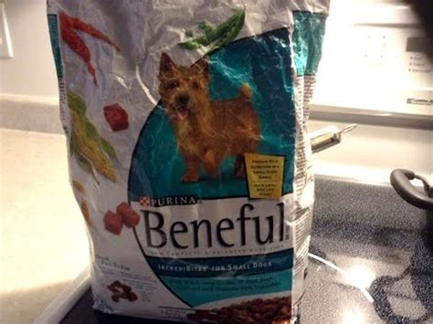 purina beneful puppy lawsuit claims purina beneful kibble food is killing dogs