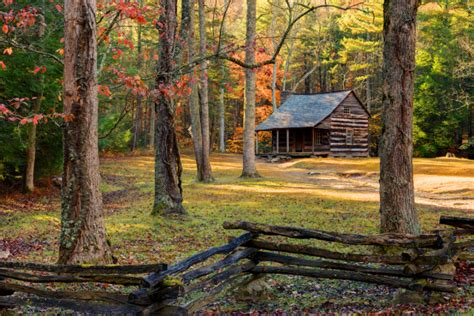 My Smoky Mountain Cabins by Shields Cabin In Fall Rick Holliday