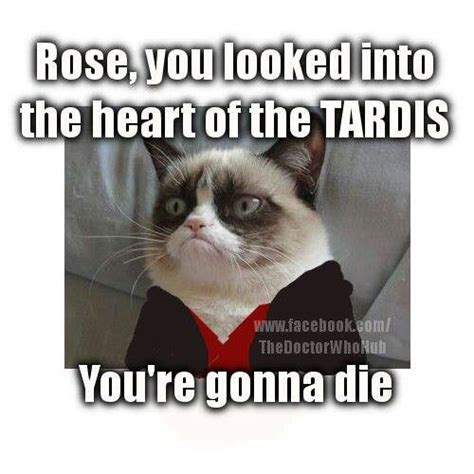 Doctor Who Cat Meme - grumpy cat doctor who doctor who pinterest dr who