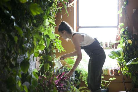 meet  woman    plants   brooklyn