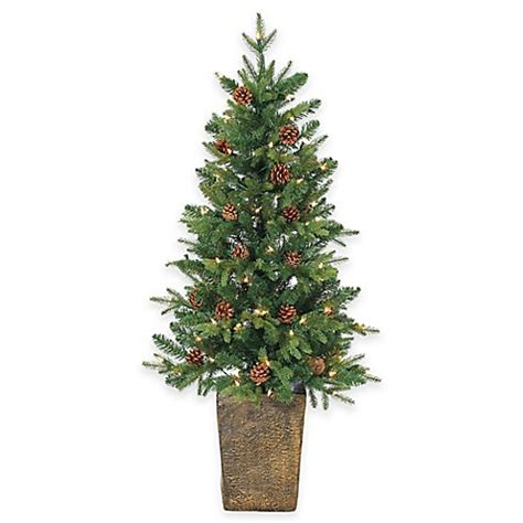 buy georgia pine 4 foot pre lit potted christmas tree with