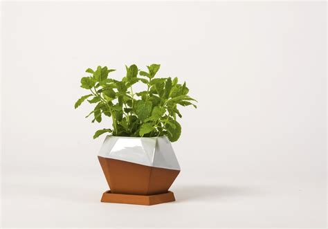 Small Pot Geometric Small Pot By Nick Fraser