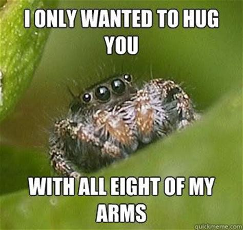 Spider Meme Pictures To Pin - jumping spider meme oooh like the misunderstood spider