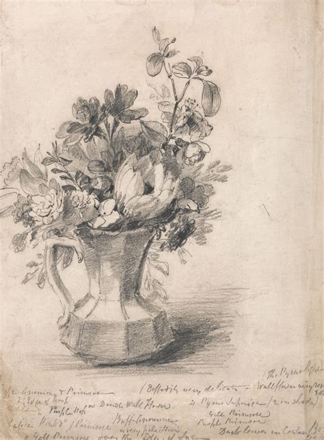 Drawings Of Flowers In A Vase by How To Draw A Flower Vase Still