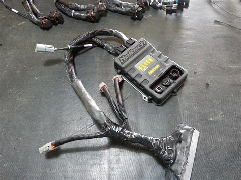 haltech platinum sport 1000 wiring diagram snow