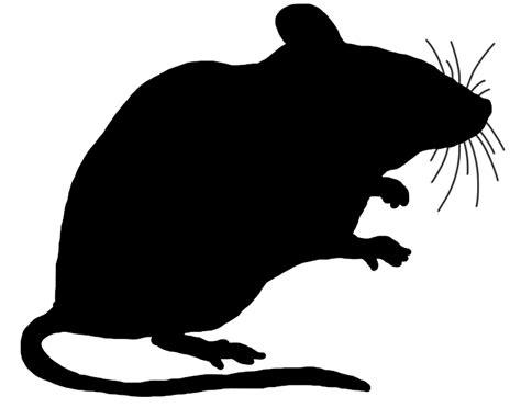 mouse clipart mouse clip