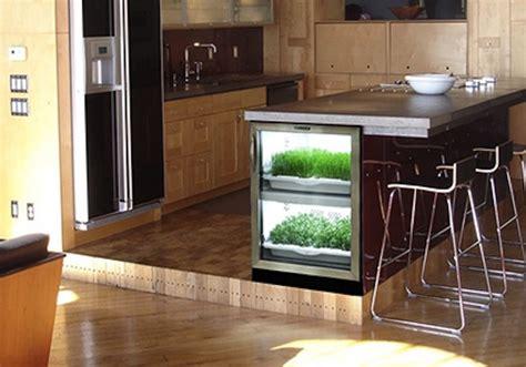 urban cultivator grows  organic hydroponic greens