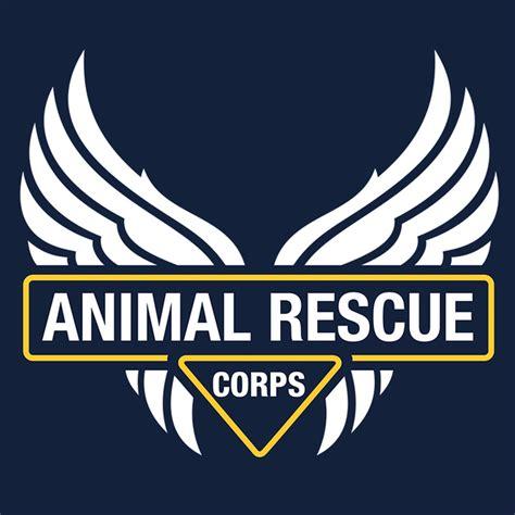middle tn golden retriever rescue amiee stubbs photography animal rescue organizations