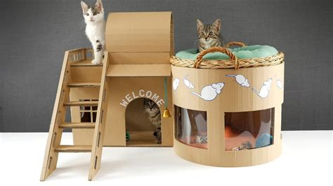 Dispenser Kucing how to make amazing kitten cat pet house from cardboard its cool