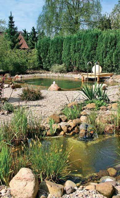 pool reinigen hausmittel die besten 25 pool reinigen ideen auf my pool