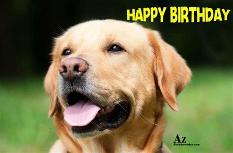 Happy Birthday Wishes Dogs Birthday Wishes With Dog