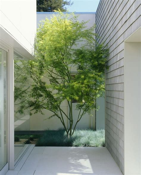 16 minimal courtyards with just a hint of nature