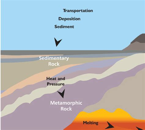 diagram of how sedimentary rocks are formed 8 best images of metamorphic rock cycle diagram rock