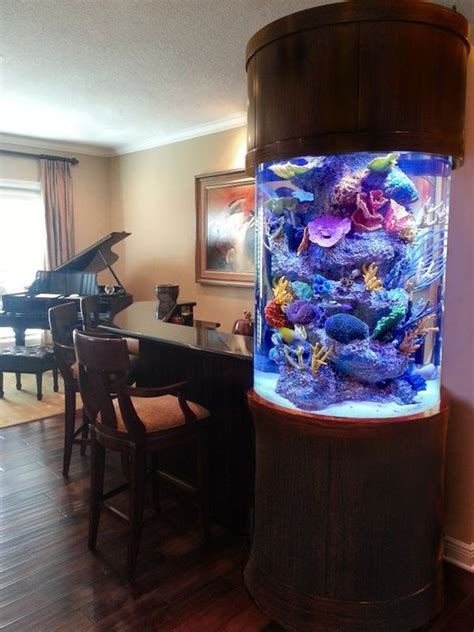aquarium architecture custom aquarium design fun den ideas for kids and adults