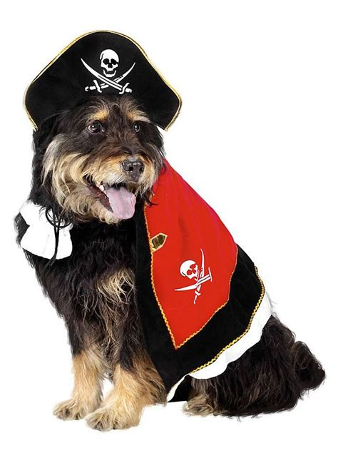 pirate costume for dogs pirate costume