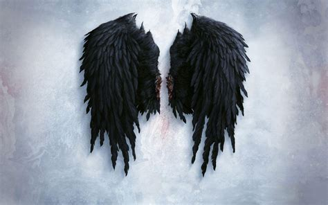 wings background wings wallpapers wallpaper cave