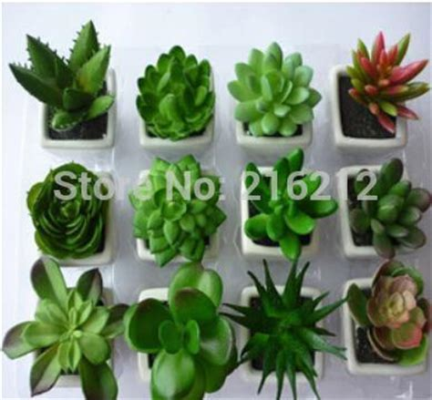 biggest online plants store aliexpress com compre vasos de flores decorativas