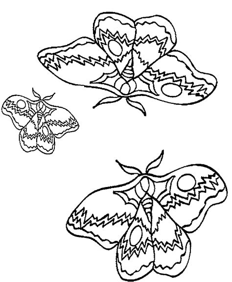 coloring book butterfly printouts butterflies printables az coloring pages