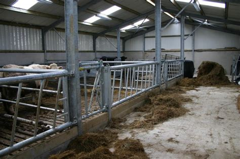 Cattle Sheds For Sale by Cattle Shed Plans Ireland Rubbermaid Garden Sheds For
