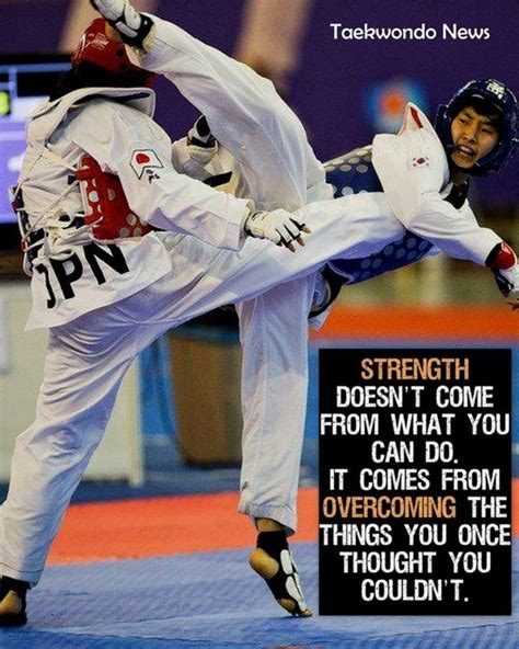 best martial arts best martial arts quotes quotesgram