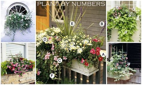 Do It Yourself Planters by Planter Boxes Plans Do It Yourself Woodworking Projects