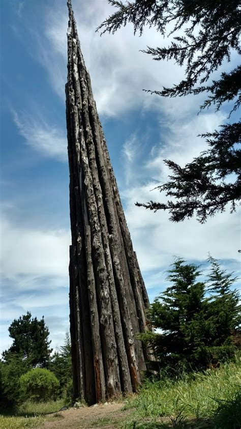 wandlen chrom ecology trail at the presidio 10 foto s wandelen