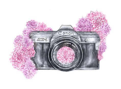 vintage camera wallpaper tumblr camera photography tumblr drawing www pixshark com