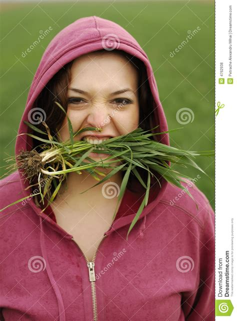 eats grass eat grass royalty free stock photos image 4762938