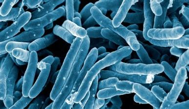 350 infants possibly exposed to tuberculosis by employee