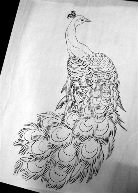 peacock tattoo design 16 awesome peacock designs and ideas