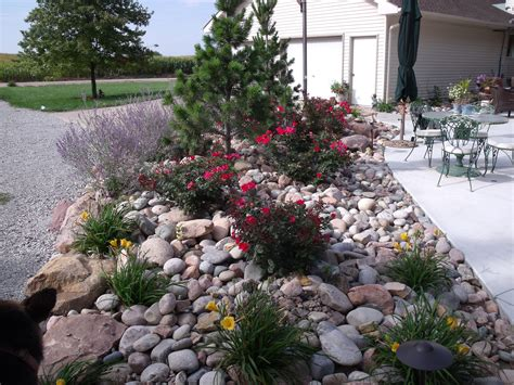 landscaping natural outdoor design  rock landscaping