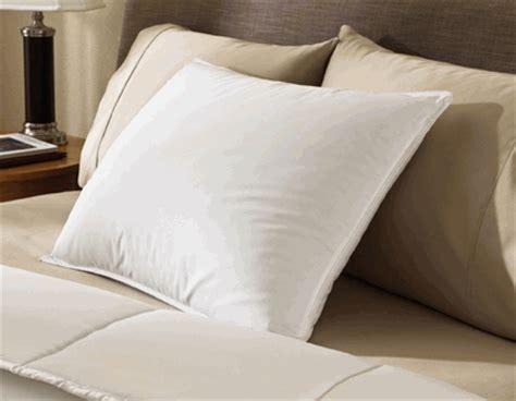 Hotel Pillow by Pillows Top Hotel Pillows Pillows